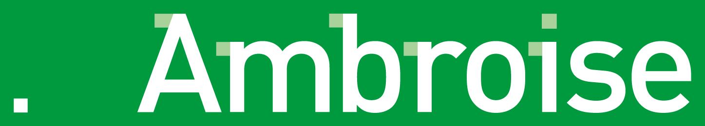 Webshop Ambroise